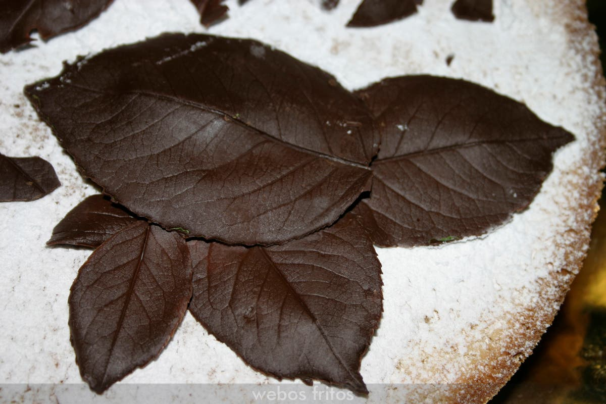 Hojas de chocolate para decorar el bizcocho