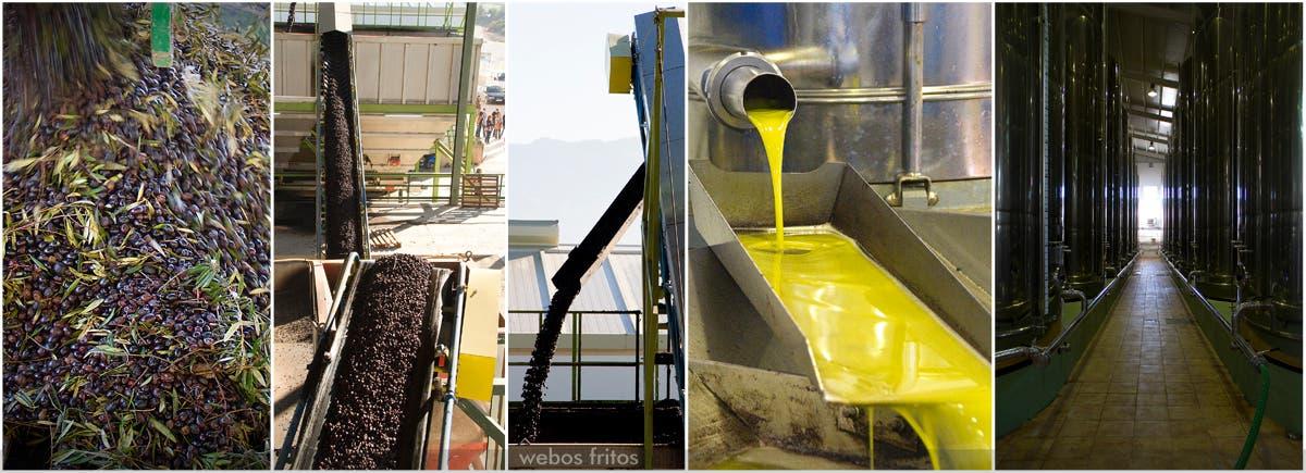 Proceso de elaboración del aceite