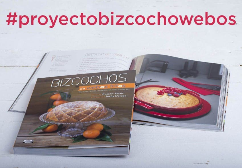 #proyectobizcochowebos