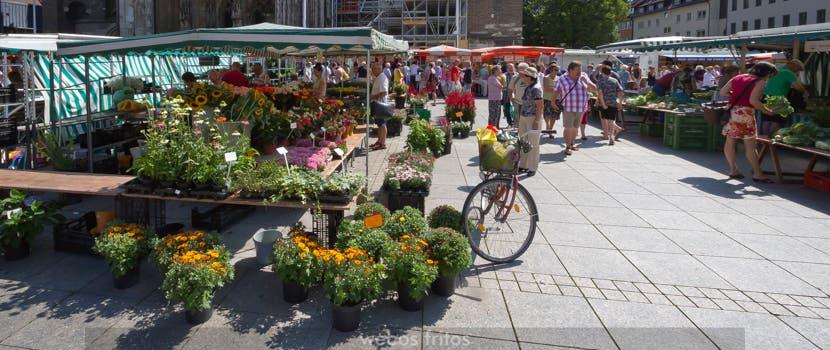 El mercado de Ulm