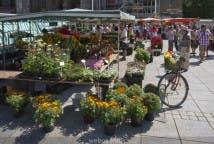 El mercado de Ulm - Destacada