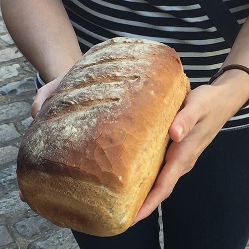 Canterbury - Pan de La Trappiste
